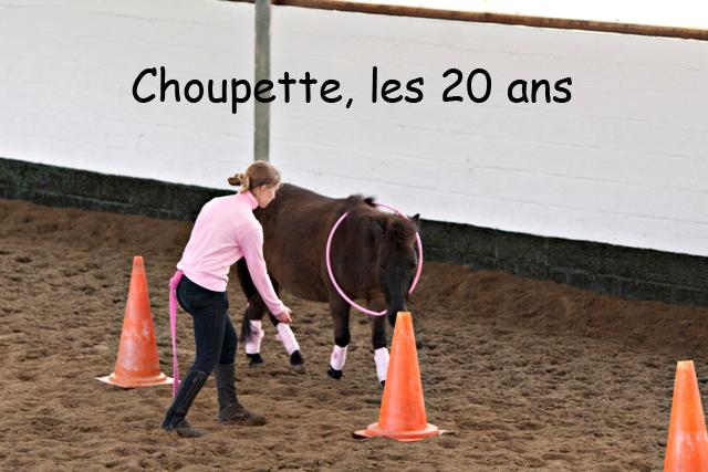 8 ans d'équitation..♥ - Page 7 _mg_5726-copie-3e26b54