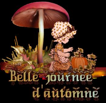 mardi 21 /10/2014  idem 0-a-belle-journ-e-d-automne-414894a