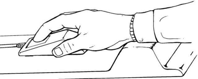 Consejos para lograr la mejor ergonomía al usar tu PC-http://img97.xooimage.com/files/6/d/b/14-4288b96.jpg