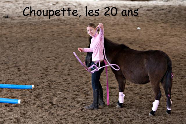 8 ans d'équitation..♥ - Page 7 _mg_5722-copie-3e26ac4