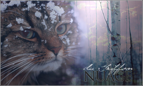 Le Joyau  Ndg-43918b1