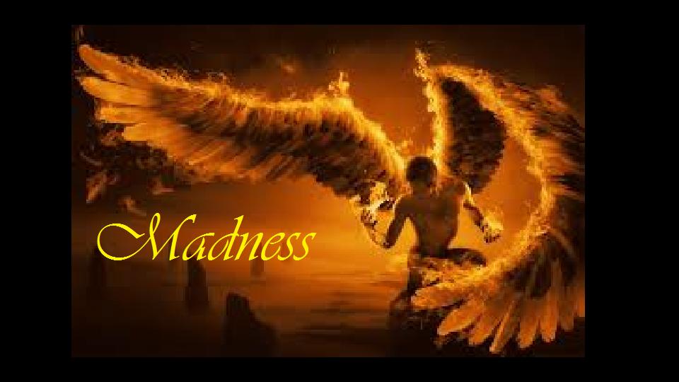 madness guilde des dieux  Index du Forum